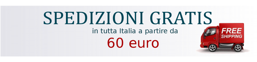 Spedizioni in Italia