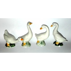 Collectible Items - Porcelain Ducks