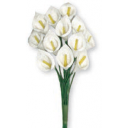 Flower Favors - White Callas