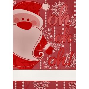 DMC - Strofinaccio Babbo Natale Rosso - RS2575