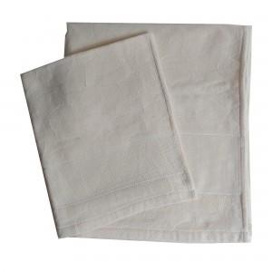 Coppia Asciugamani Spugna da Ricamare - Ginko