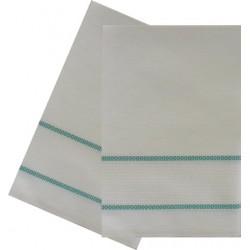 Kitchen Towel with Aida Band - Green Border
