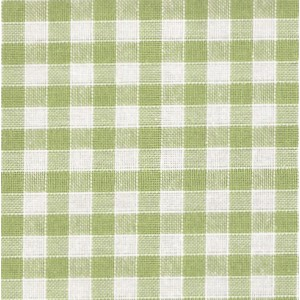 Rustichella Checkered Fabric 1x1 cm - Width 180 cm - Green Apple Color 334